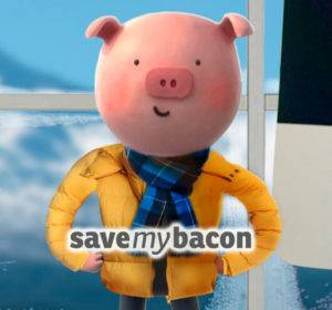 save my bacon loan